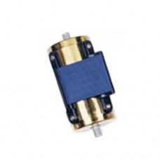Puntale dorato PU5195DB con nastro Blu